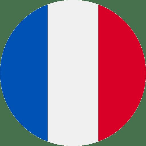 Best French Online Casinos